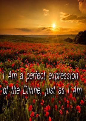 I Am a Perfect Expression